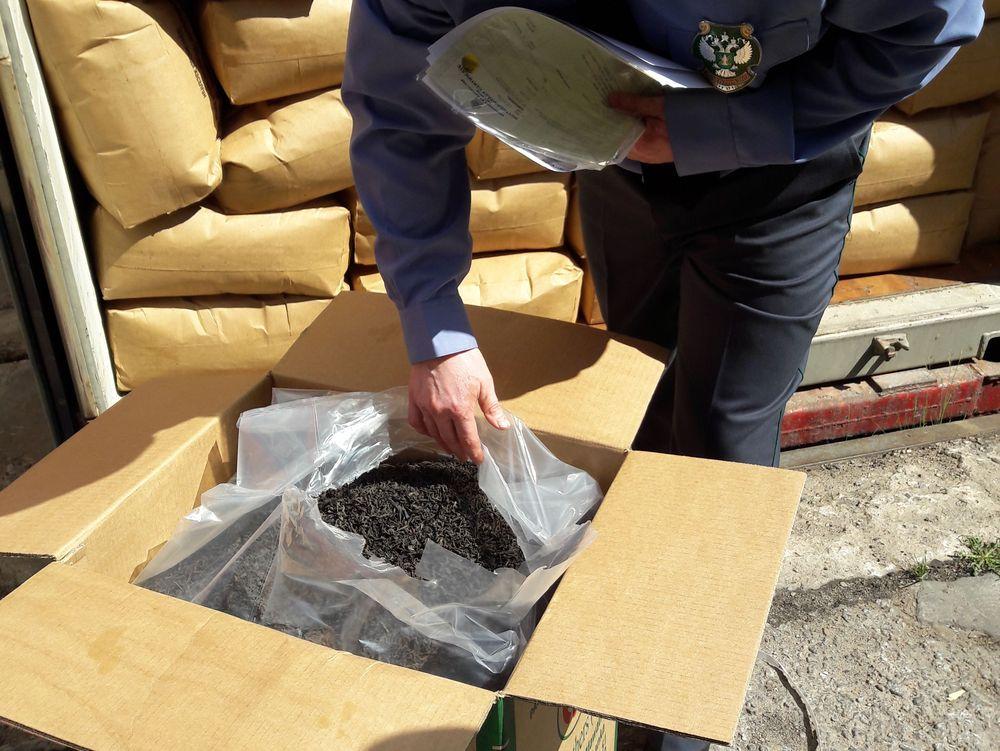 В Тверской области проверили импортные зерна и семена - новости Афанасий