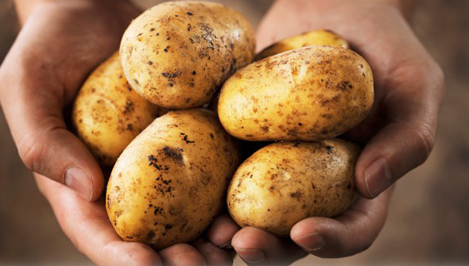 В Тверской области дешевеют огурцы и дорожает картофель