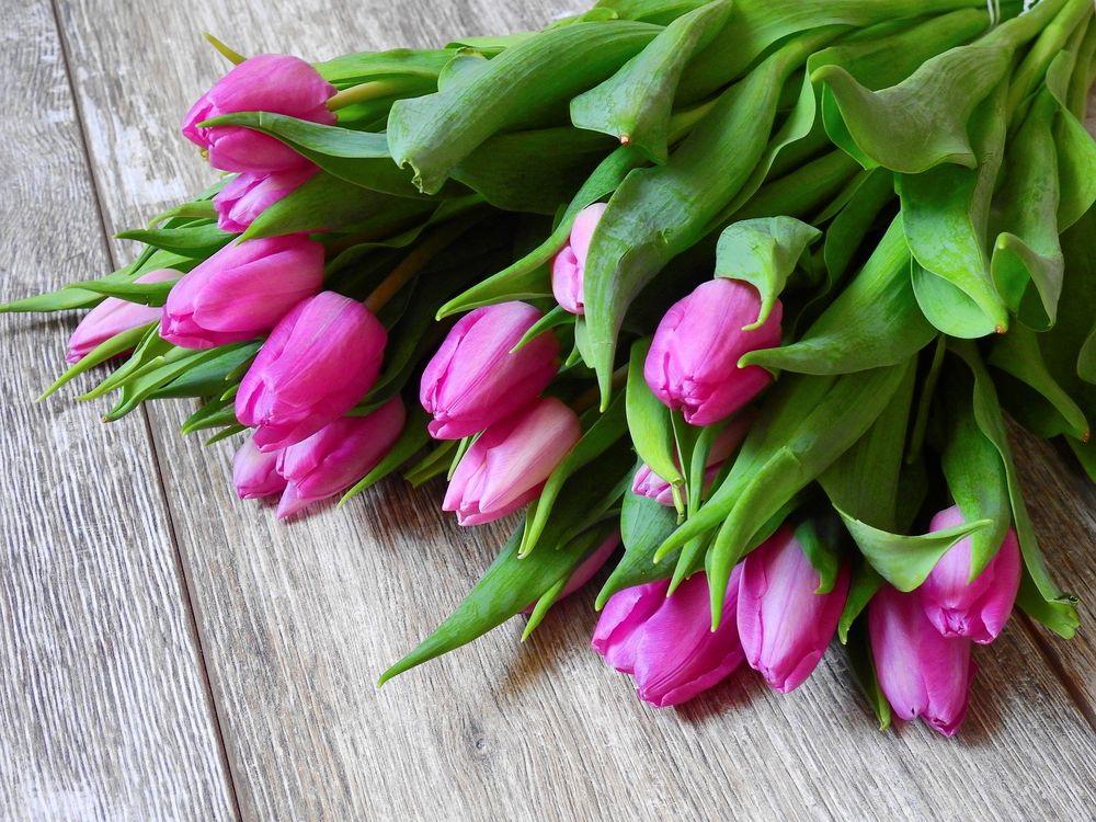 Специалисты рассказали, как выбрать цветы к 8 марта
