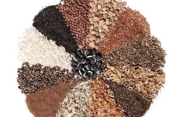 Специалисты рассказали о сроках годности семян сельскохозяйственных культур - новости Афанасий
