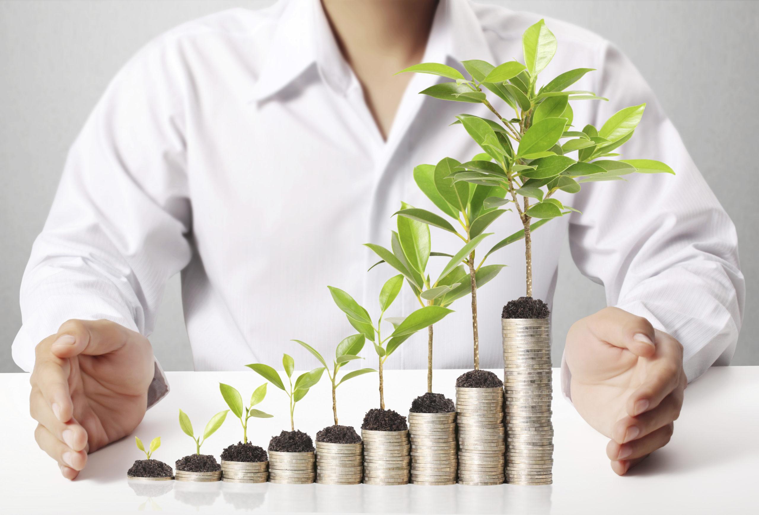 ВТБ начал прием заявок по возобновляемой программе для бизнеса ФОТ 3.0  - новости Афанасий