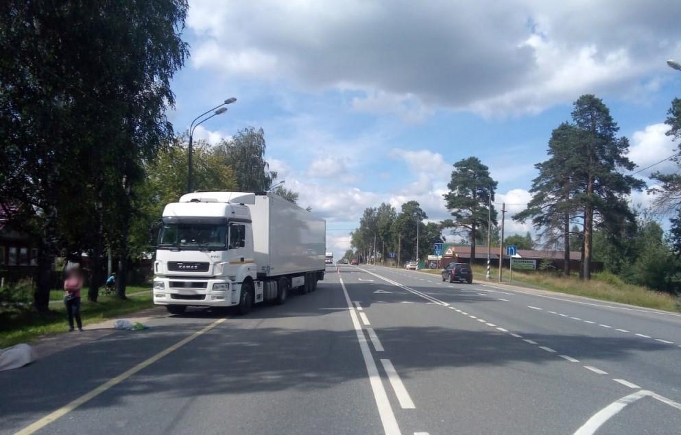 На М-10 в Тверской области Камаз сбил женщину - новости Афанасий