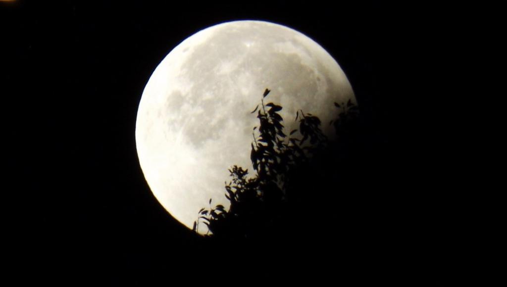 В 2021 году небо порадует россиян двумя лунными и одним солнечным затмением - новости Афанасий