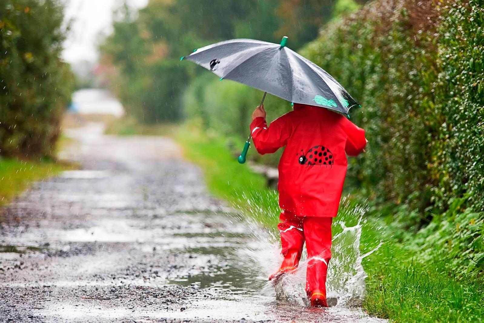 Первая неделя лета в Тверской области будет дождливой