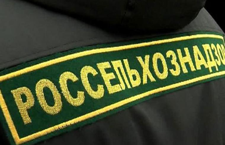 На комбинате «Смена» Росрезерва проведен мониторинг карантинных объектов - новости Афанасий