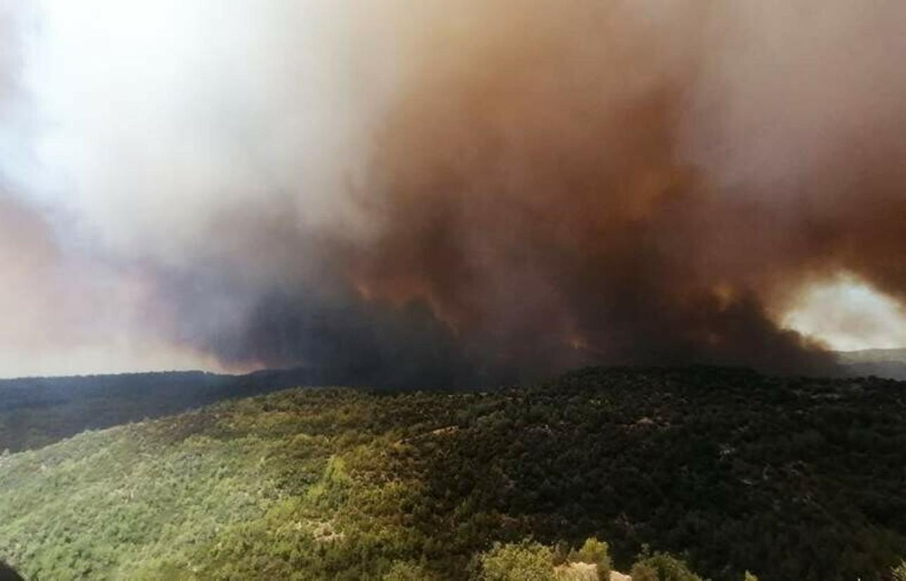 Туристов начали эвакуировать из отелей после лесных пожаров в Турции
