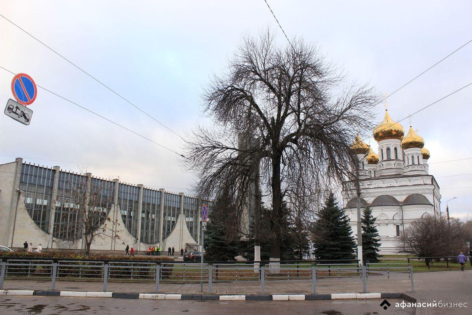 В Тверской области ожидают усиление ветра