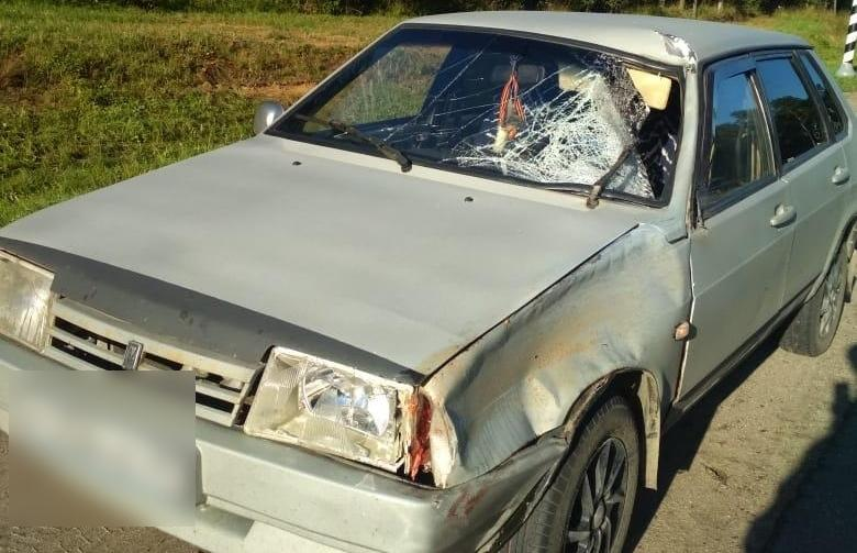 В Тверской области будут судить женщину, насмерть сбившую на трассе М10 пешехода - новости Афанасий