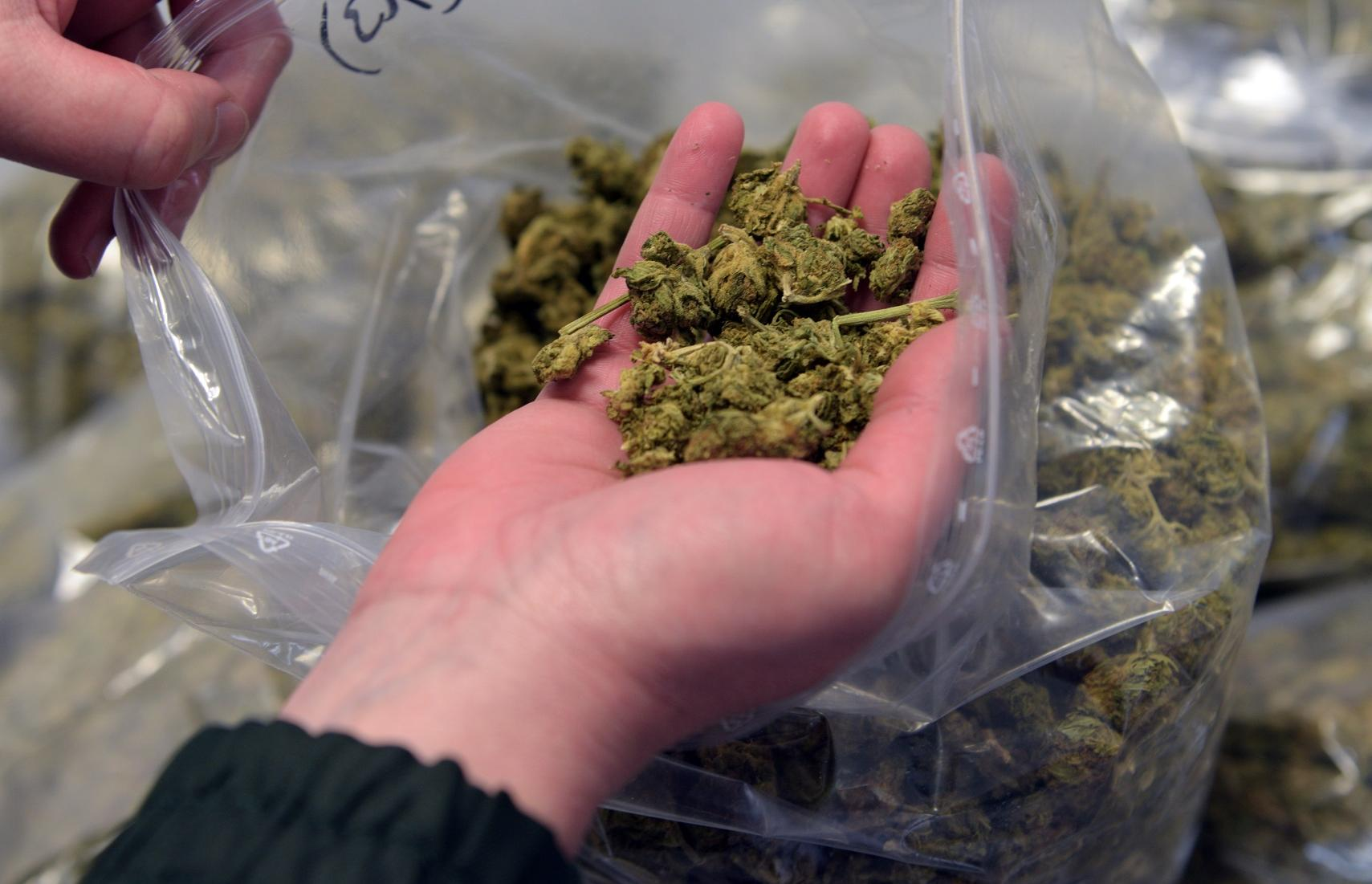 В Тверской области мужчину задержали за хранение наркотиков - новости Афанасий