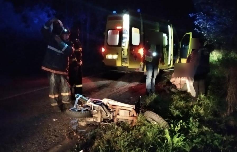 Под Тверью парень и девушка получили травмы, врезавшись на скутере в лося - новости Афанасий