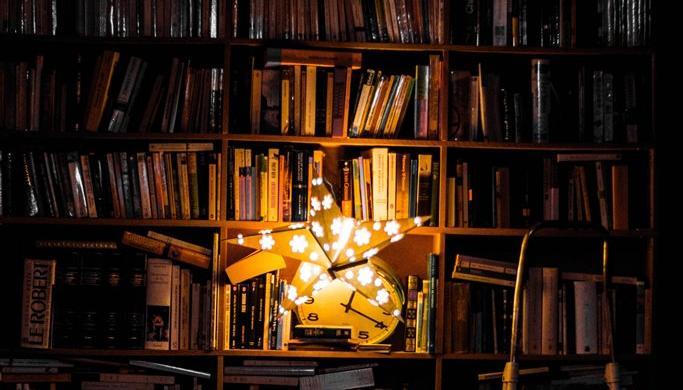 «Библионочь» в Тверской области: спектакли от театров теней и экскурсия в книгохранилище с элементами квеста