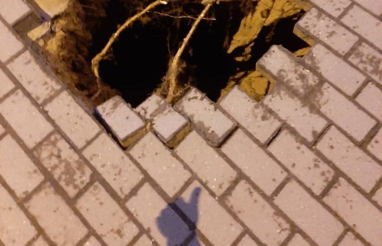 В Твери в парке появилась «дыра в светлое будущее» - новости Афанасий