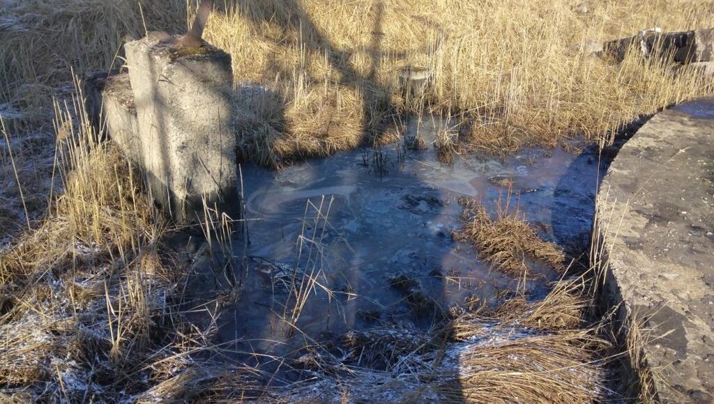 Общественники сообщили о том, что в Осташкове Тверской области в реку стекает мазут - новости Афанасий