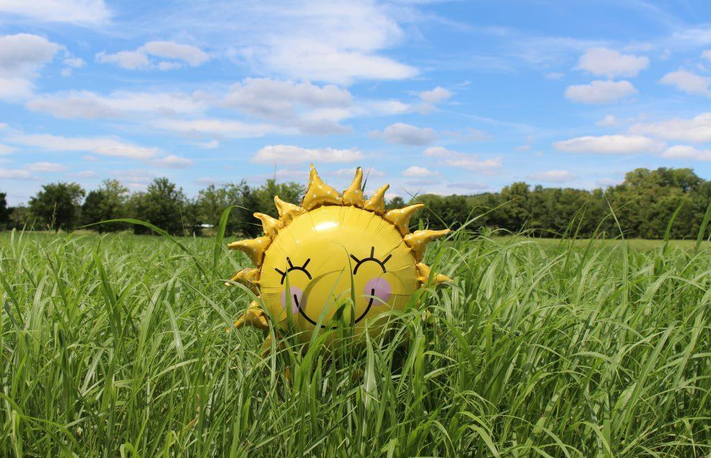 Жаркая погода задержится в Тверской области на неделю