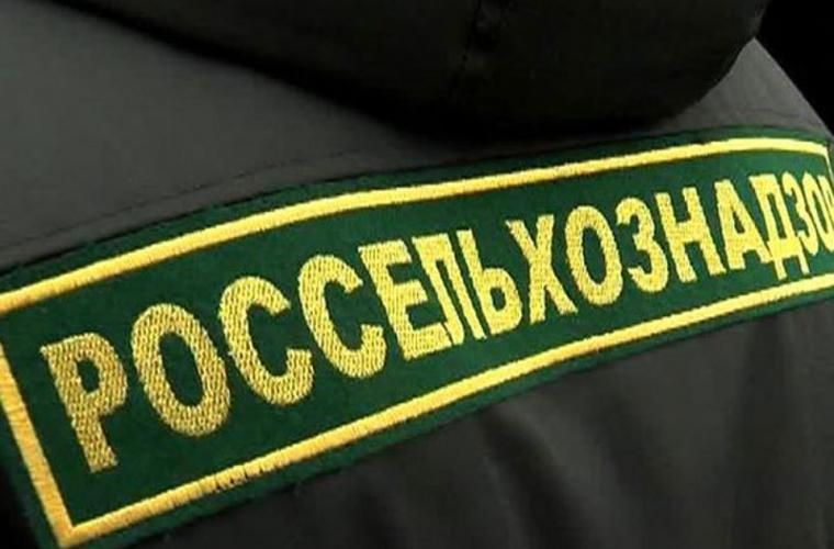 В Тверской области проверили более 800 тонн импортного кофе