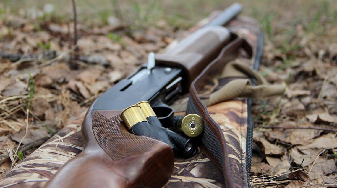 В Тверской области поймали браконьеров, подстреливших лося - новости Афанасий