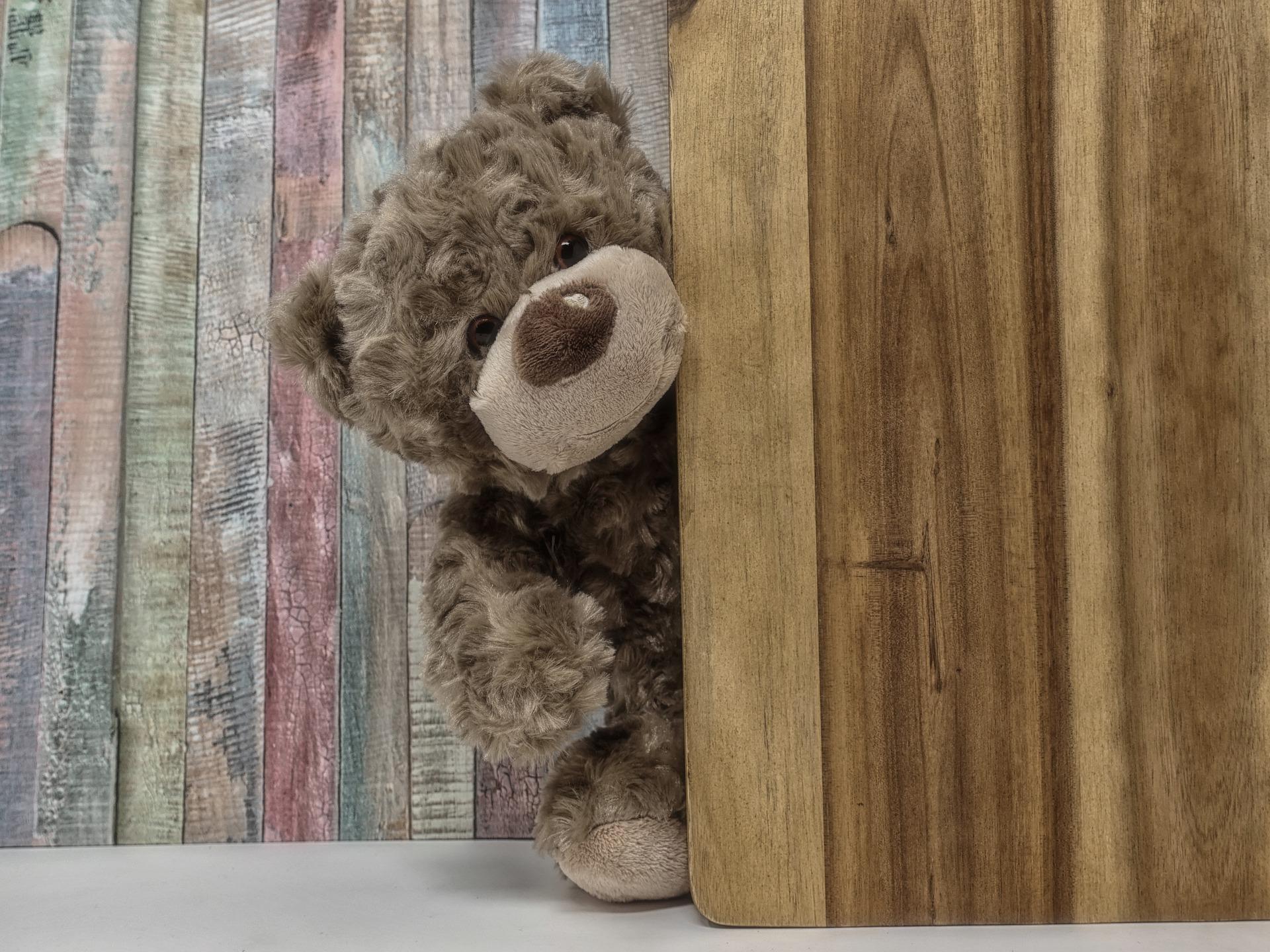 В Центр спасения медвежат в Тверской области привезли десятого медвежонка - новости Афанасий