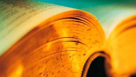 Тверитянкам, лучше всех написавшим тотальный диктант, подарят орфографические словари