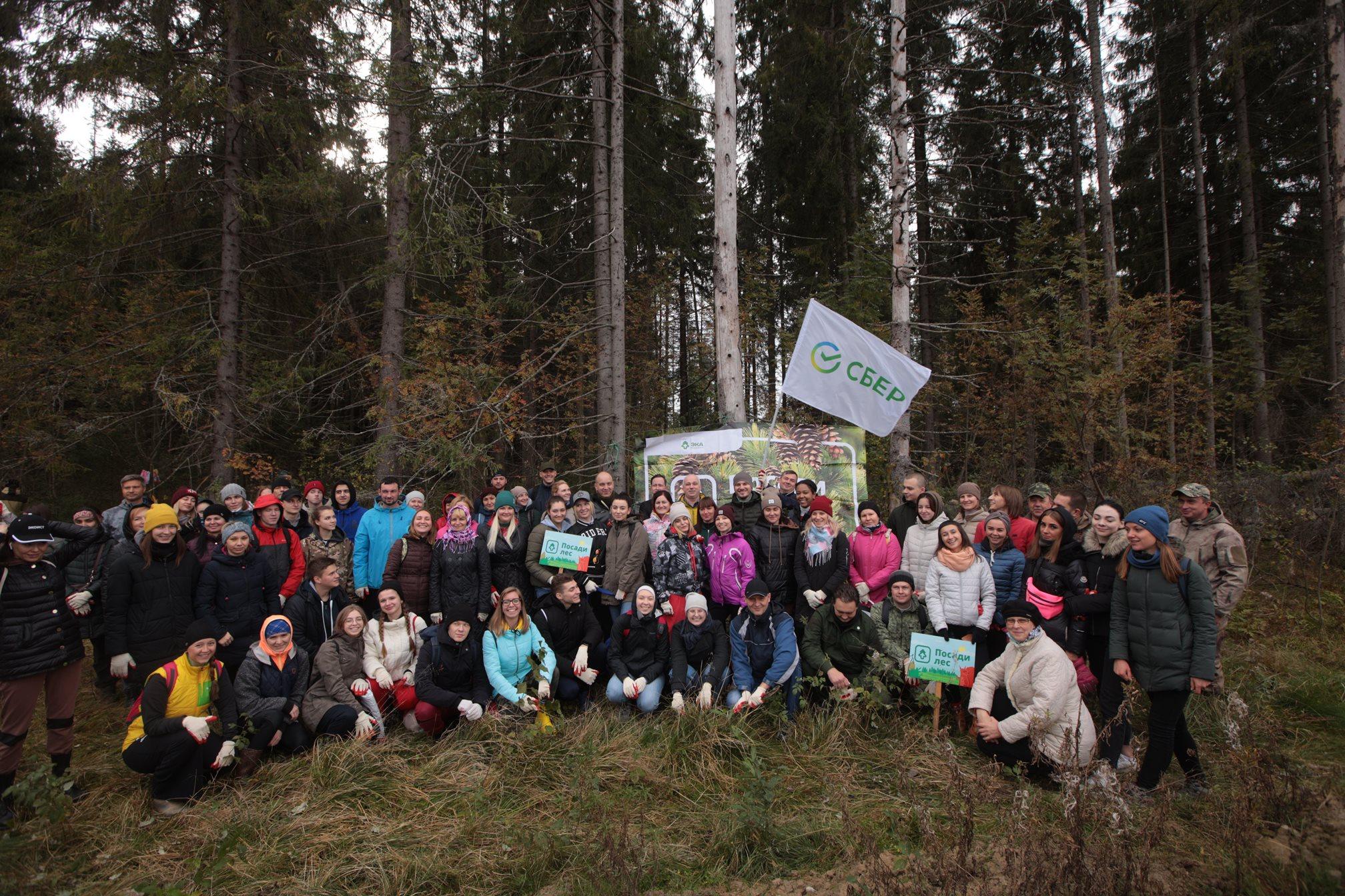 Более 20 тысяч молодых саженцев высадил Сбер в рамках Всероссийской экологической акции «Сохраним лес»