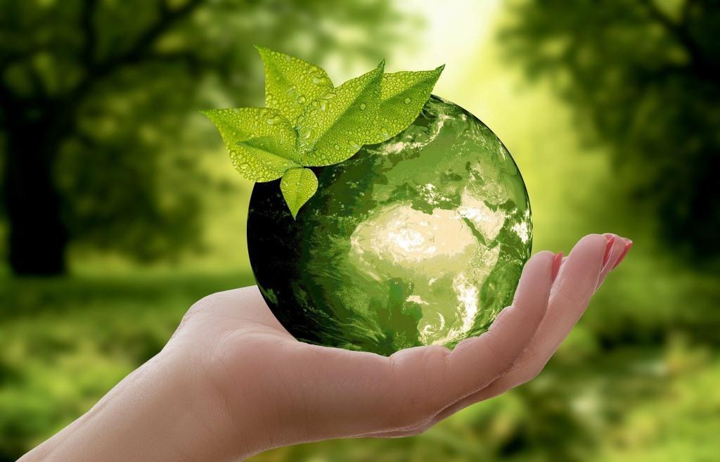 Жители Твери помогут сохранить экологию региона