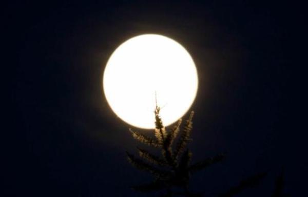 В апреле с неба снова начнут падать звезды - новости Афанасий