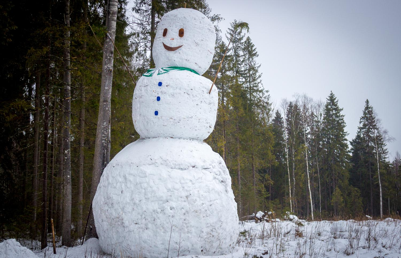 УМестный туризм. Какие технологии нужны в Центральной России для развития отрасли приключений и путешествий
