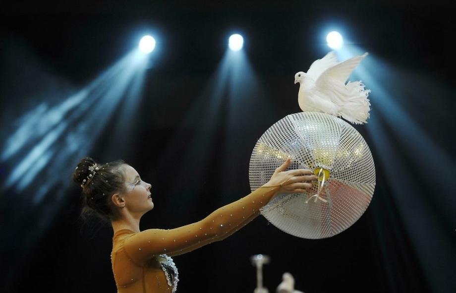 В Тверь на фестиваль детского и молодежного циркового искусства приедут участники со всего мира - новости Афанасий