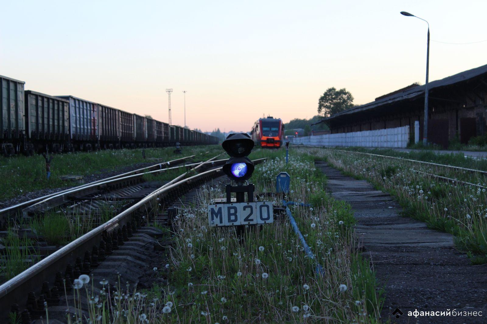 В Тверской области лось погиб на железной дороге после встречи с поездом