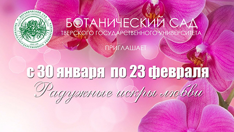 Ботанический сад ТвГУ приглашает на выставку орхидей