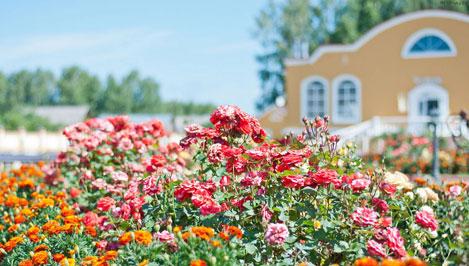 В Тверской области проходит фестиваль шансона имени Михаила Круга / фото