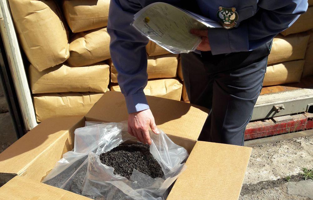 В Тверской области досмотрены тонны лука, кофе, чая и лекарственного сырья