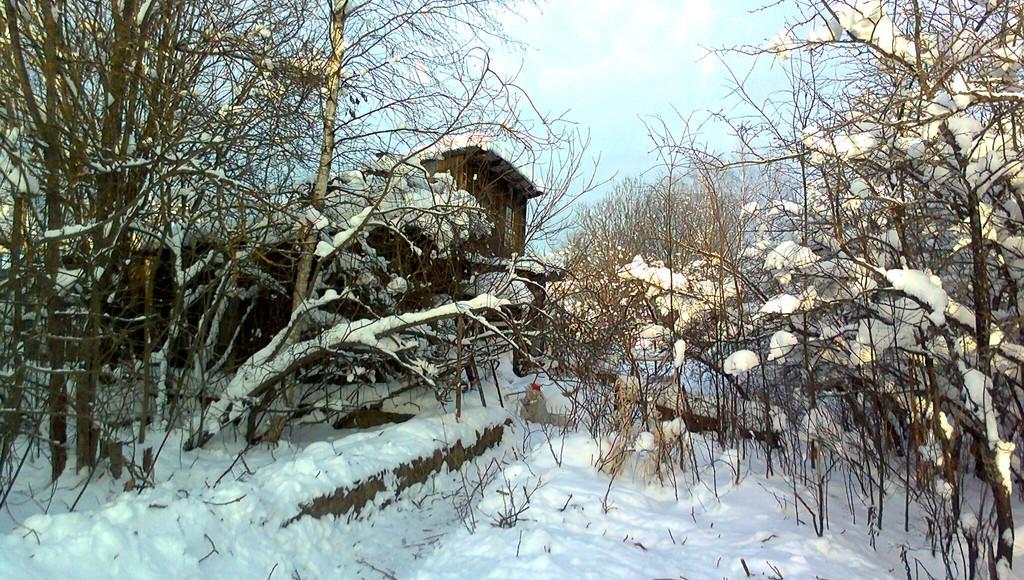 В Тверской области жители решили помочь оставшейся в мороз без дров пенсионерке