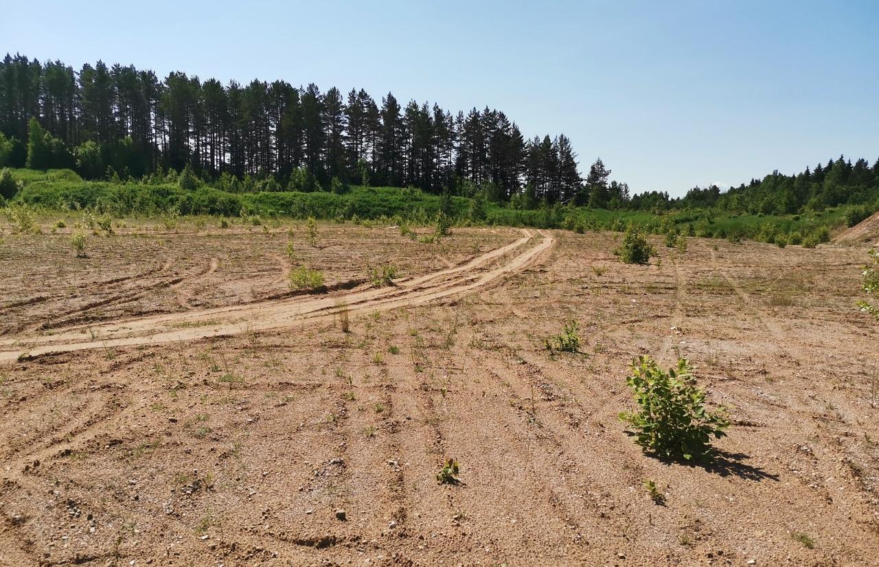 Мировой суд привлек землевладельца к ответственности за уклонение от проверки по исполнению предписания - новости Афанасий