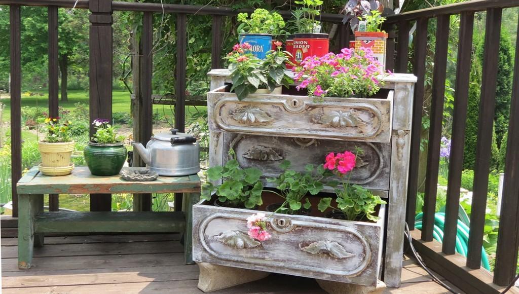 Тверской Ботанический сад ищет старую мебель и посуду для выставки «Бабушкины окна» - новости Афанасий