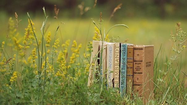 Небанальное лето. Пять легких книг для чтения до осени