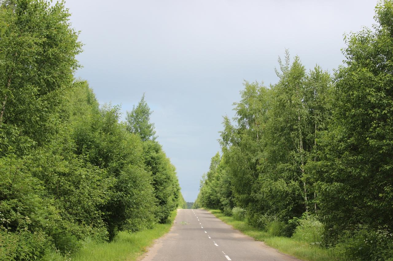 В Тверской области чиновников заставили осветить районные дороги - новости Афанасий