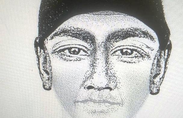 В лесу возле трассы М9 нашли череп возможного убийцы жителя Твери - новости Афанасий
