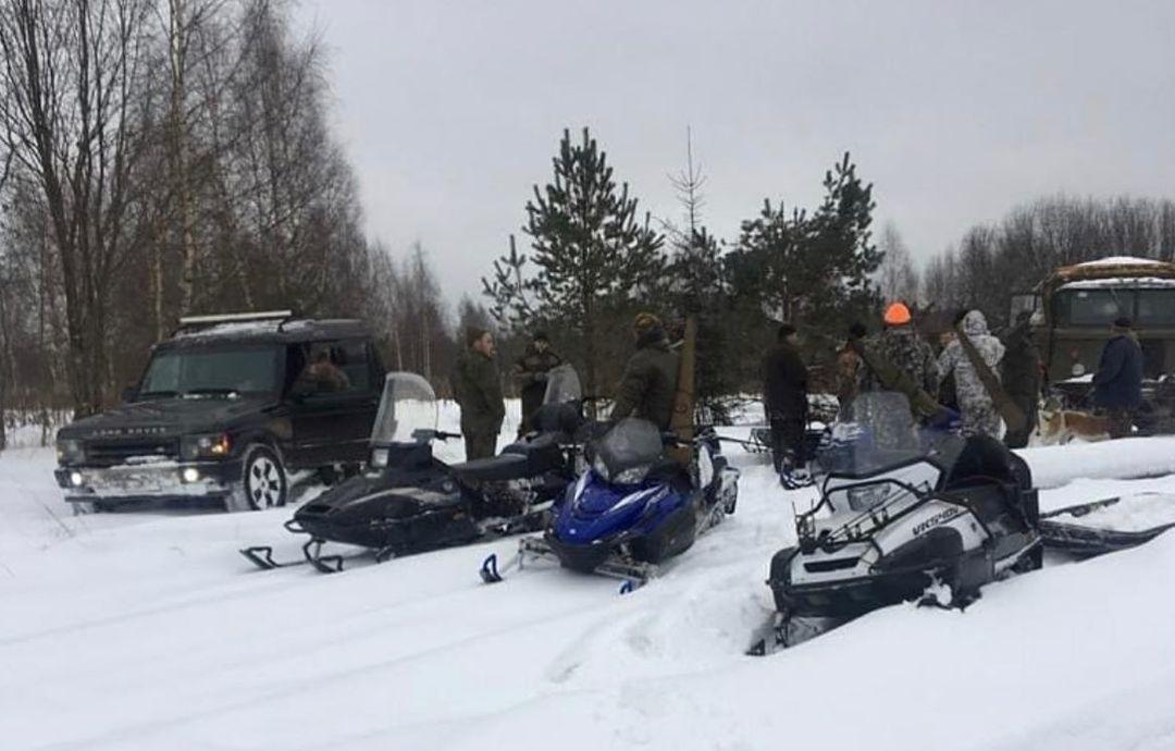 Игорь Руденя взял под личный контроль расследование факта жестокого обращения с лосихой - новости Афанасий