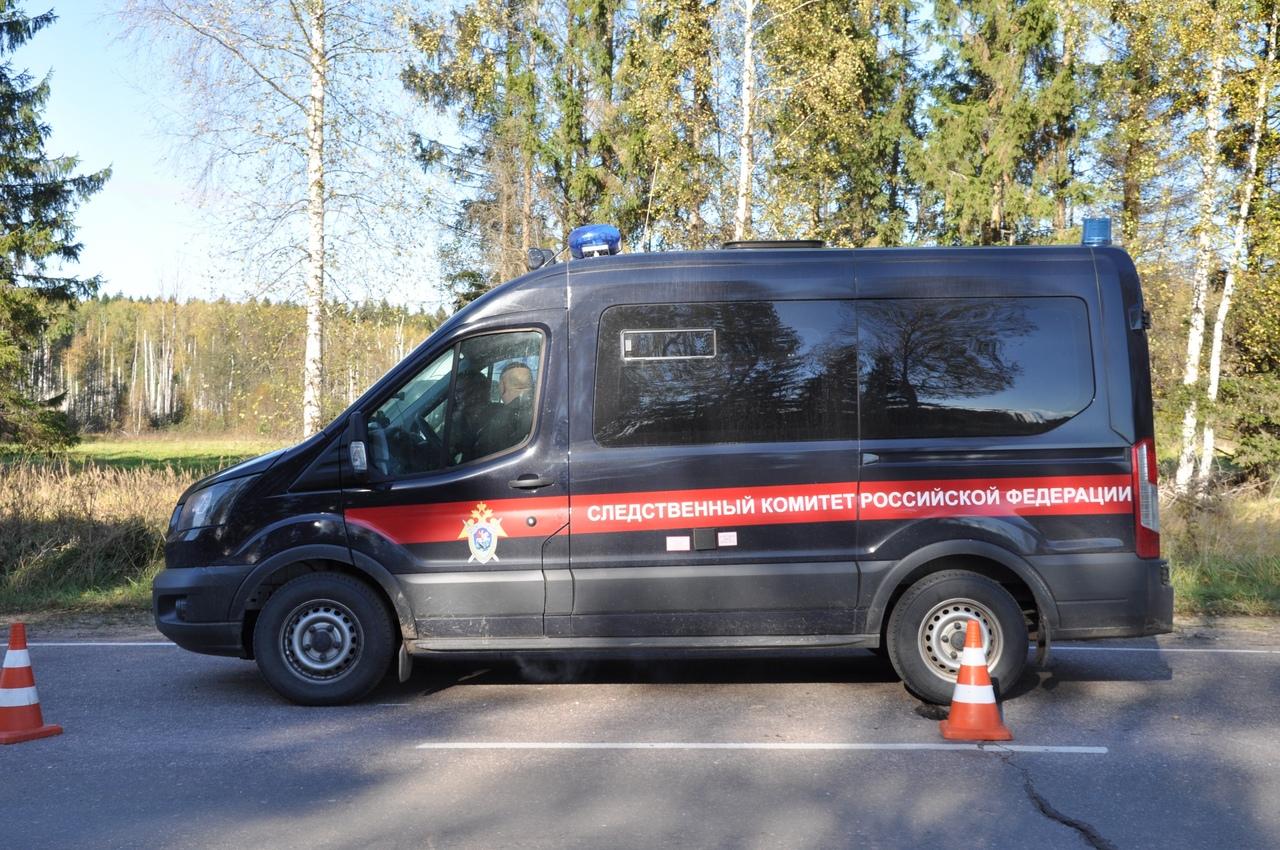 Установлено местонахождение пропавшей в Тверской области девочки - новости Афанасий
