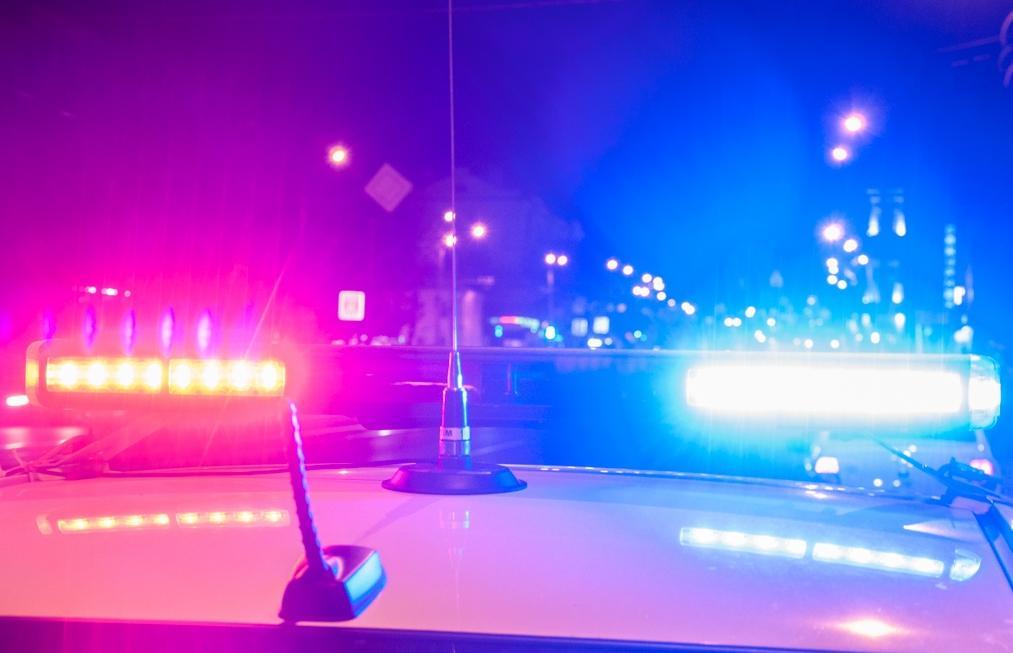 Пожилого пешехода сбили на трассе М10 под Тверью - новости Афанасий