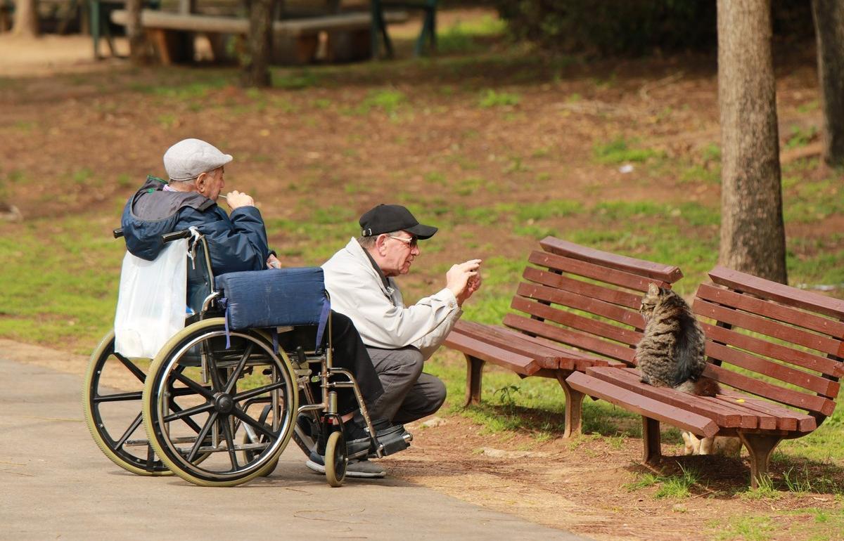 Инвалиды смогут получать средства реабилитации по электронному сертификату - новости Афанасий