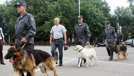 Школы Тверской области, в которых проводился капремонт, будут проверены с использованием служебных собак