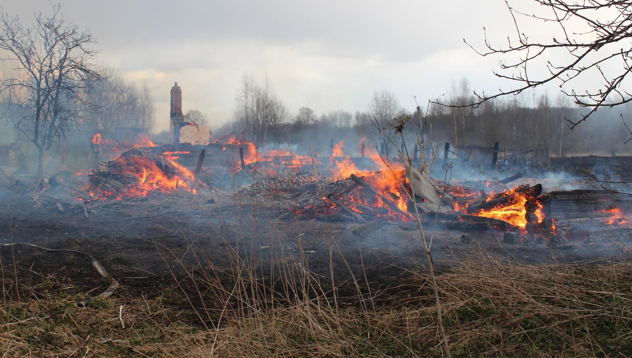 Деревня в Бельском районе Тверской области чуть не сгорела целиком - новости Афанасий