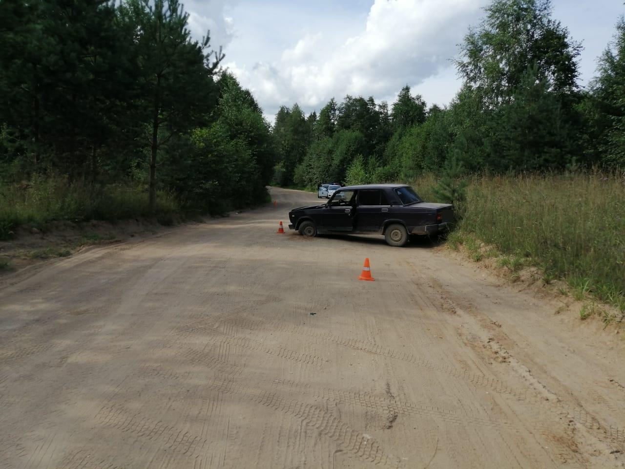 В Тверской области 16-летний водитель сбил 70-летнюю женщину - новости Афанасий