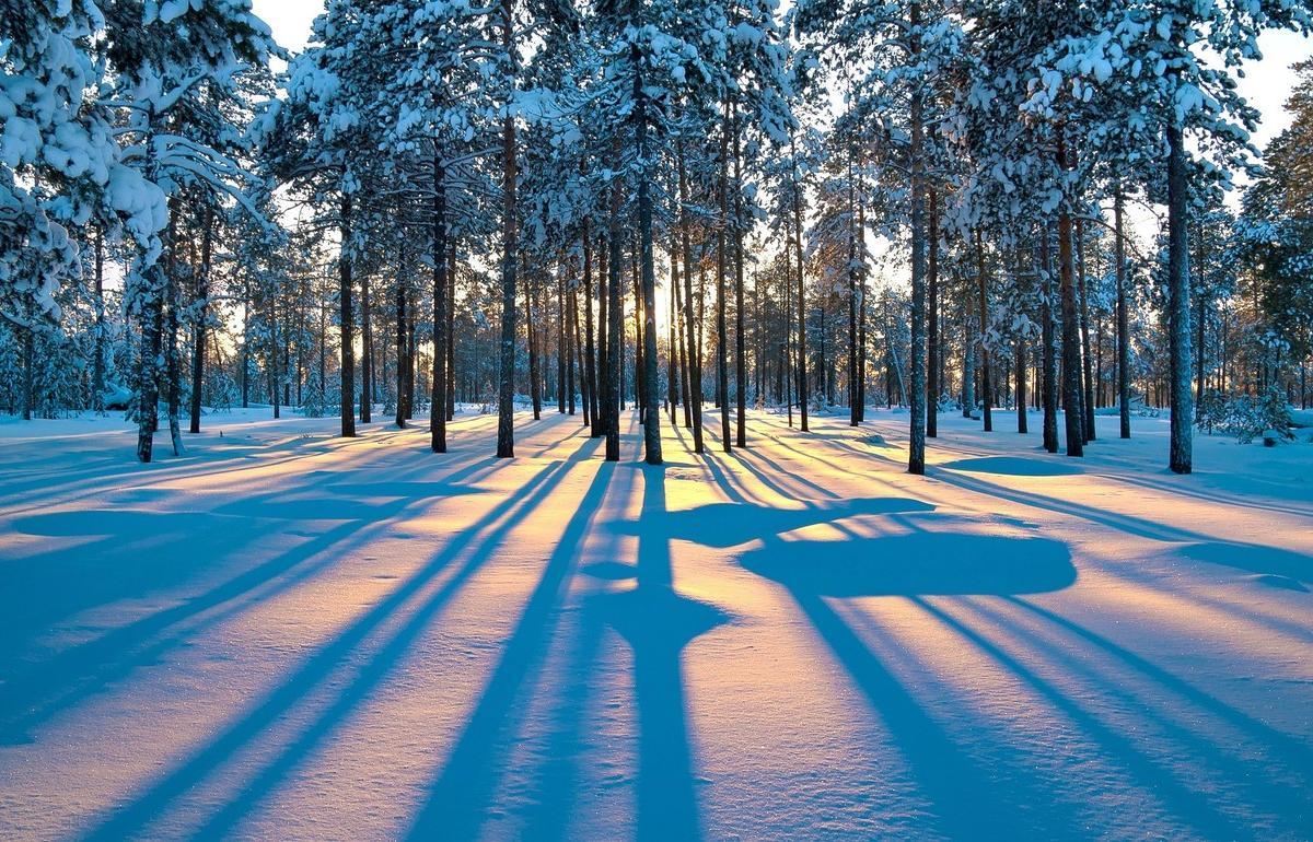 Ученые дали прогноз на грядущую зиму