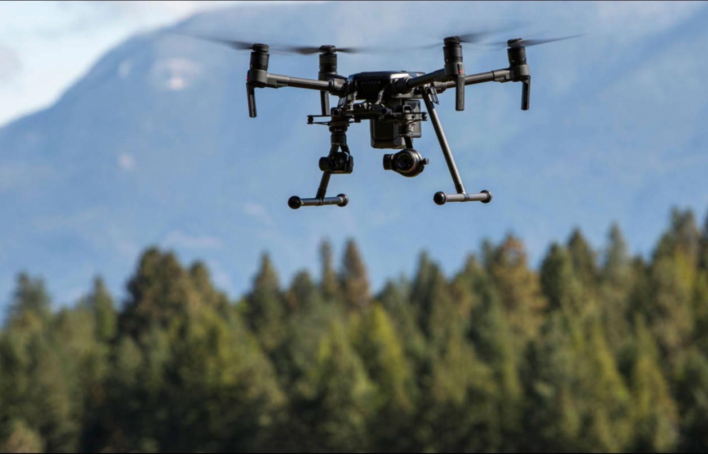 «Черных лесорубов» будут ловить беспилотники с искусственным интеллектом