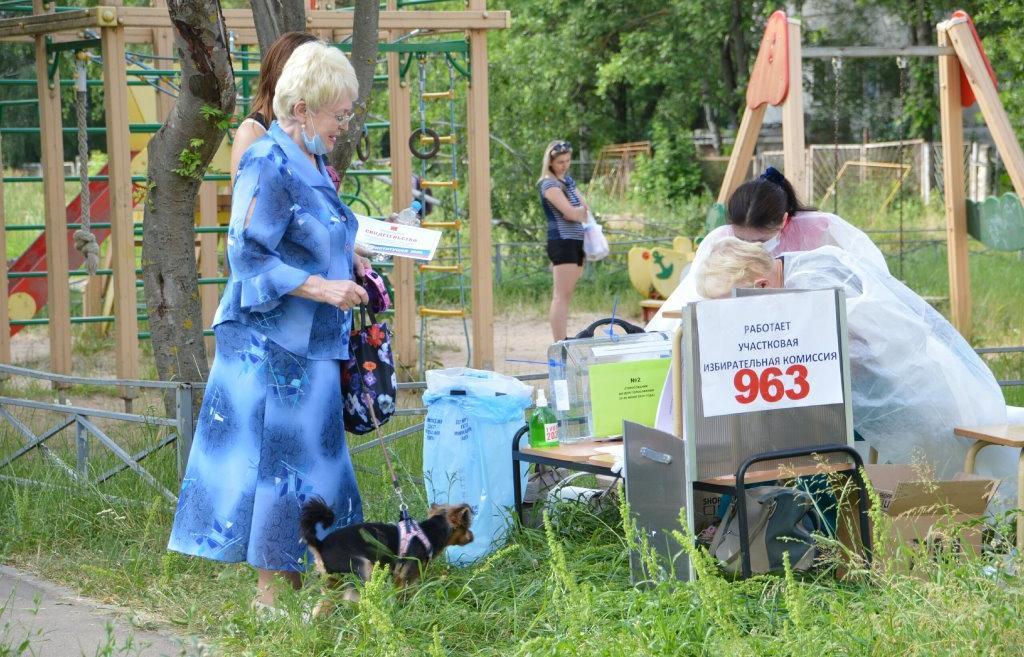 Жительница Твери пришла на голосование по Конституции с собакой Тошкой - новости Афанасий