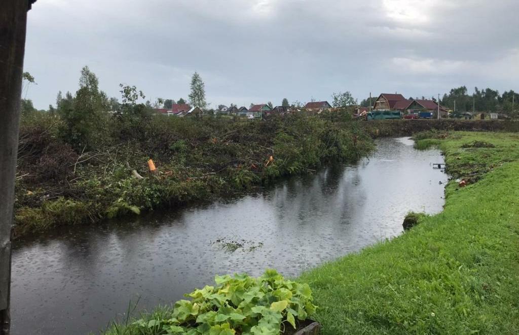 В Андреаполе Тверской области началась расчистка русла реки Городня