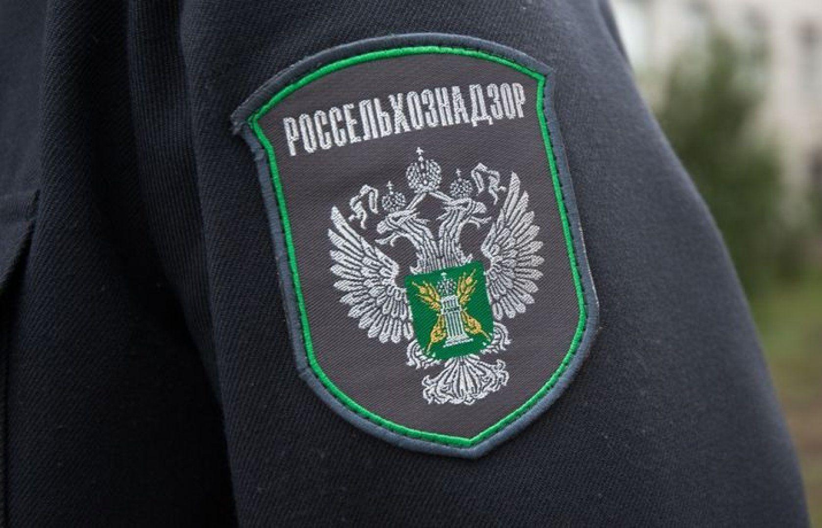 Собственник из Фировского района оштрафован за воспрепятствование проведению проверки - новости Афанасий