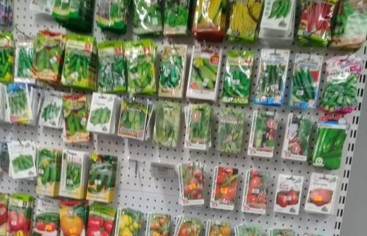 На рынке в Зубцове продавались непроверенные семена - новости Афанасий